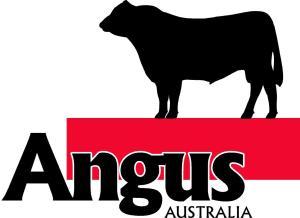 Angus Australia Logob colour 2